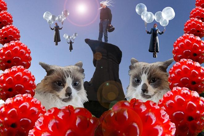 small 1 - balloon cat caitlind flat